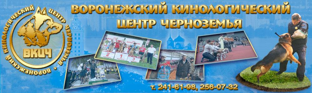 Схемы проезда, Воронежский